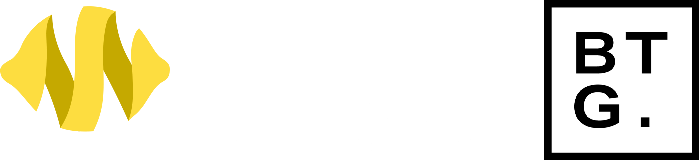Bayside Technology Group | Citric Digital Agency